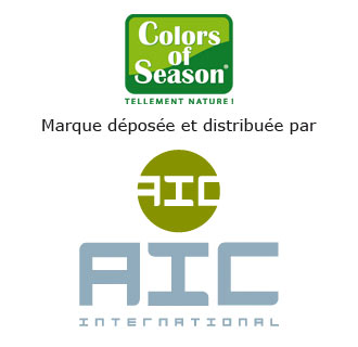 AIC INTERNATIONAL
